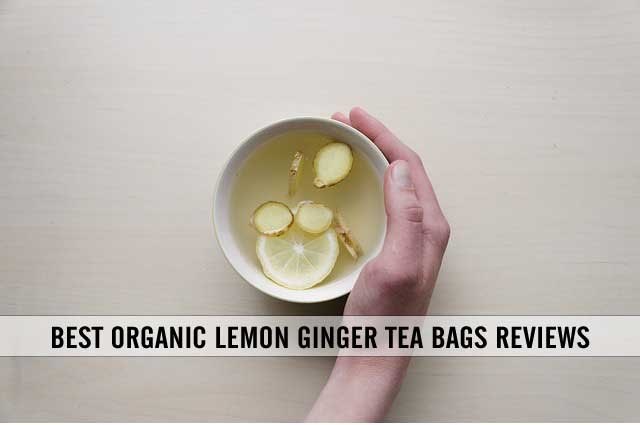 best ginger lemon tea bags reviews