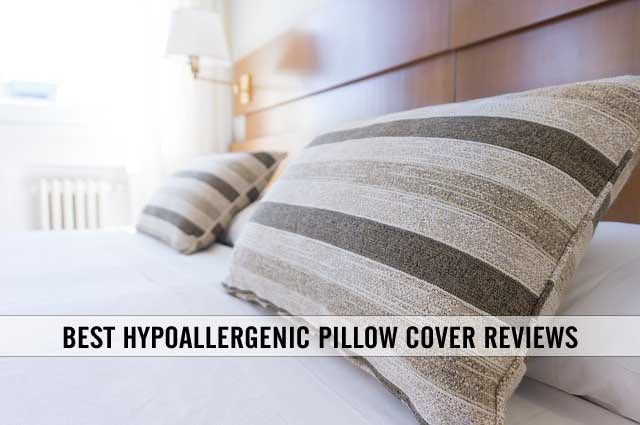 best hypoallergenic pillow cover reviews
