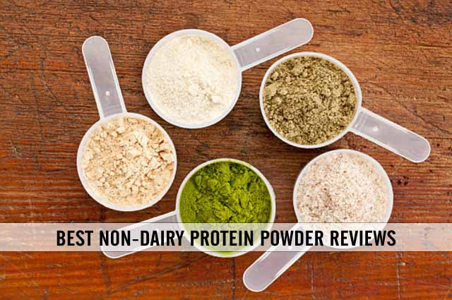 best non dairy protein powder reviews